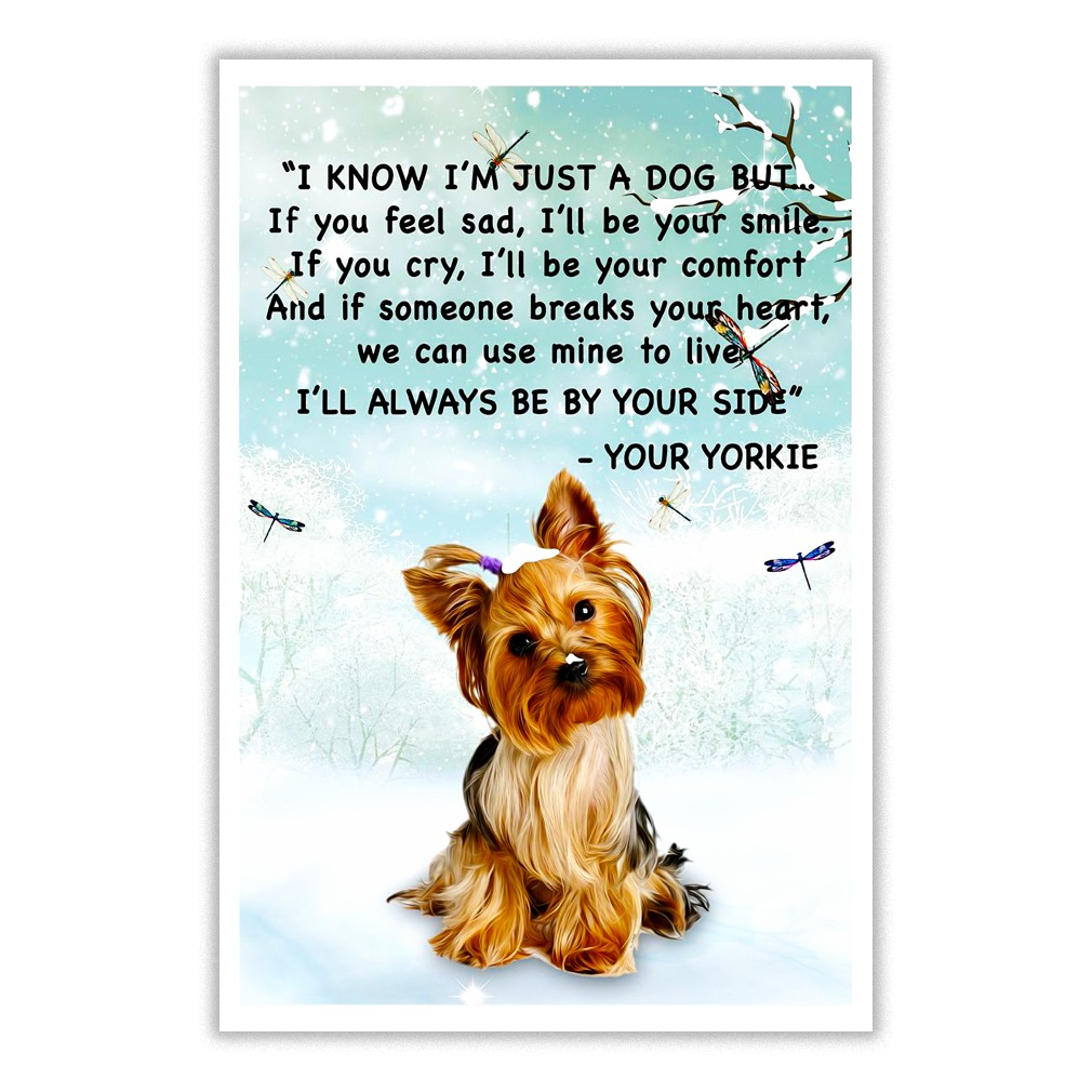 Yorkshire Terrier I know i'm just a dog but If you feel sad, I'll be your smile poster